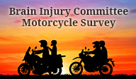 Link to the Delaware Brain Injury Committee Motorcycle Survey